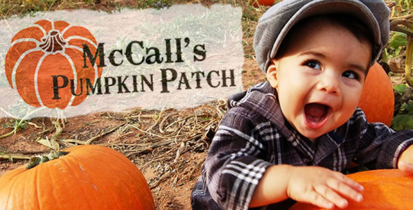None - Win McCall's Pumpkin Patch Passes