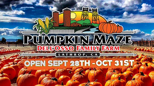 None - Dell'Osso Family Farm: Pumpkin Maze