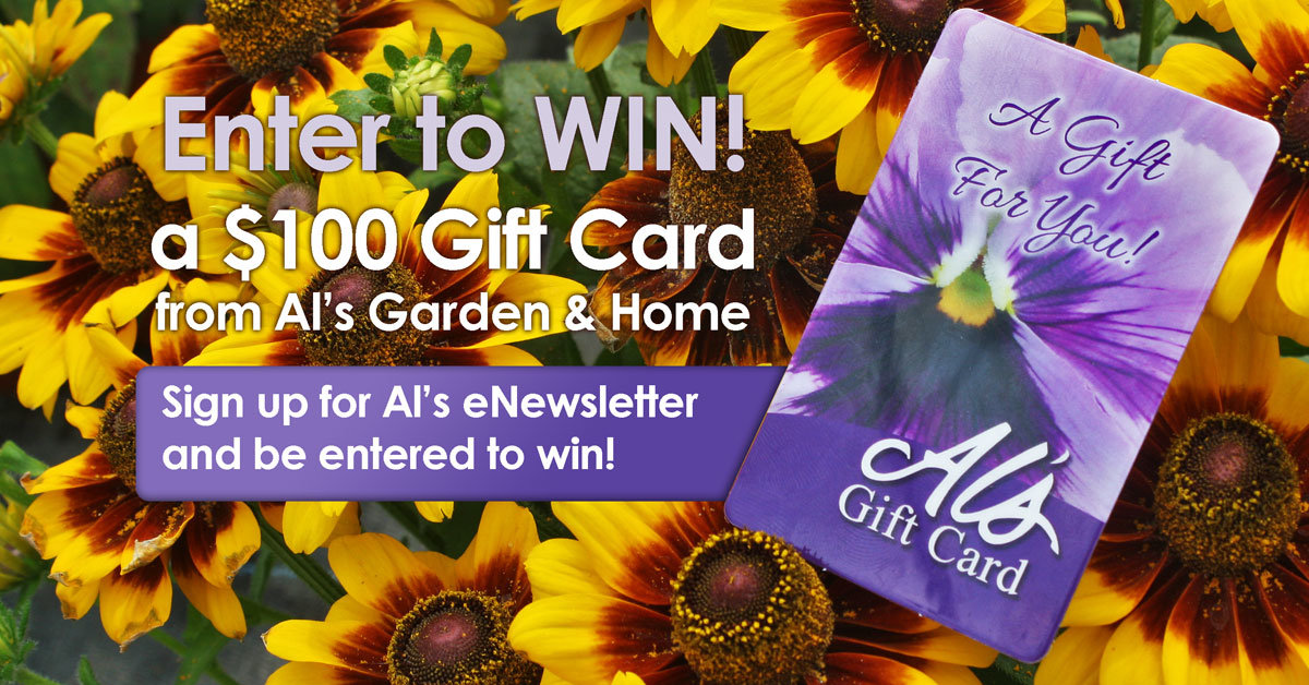 this promotion ended oct 15th 1159 pm 100 gift card to als garden center - Als Garden Center