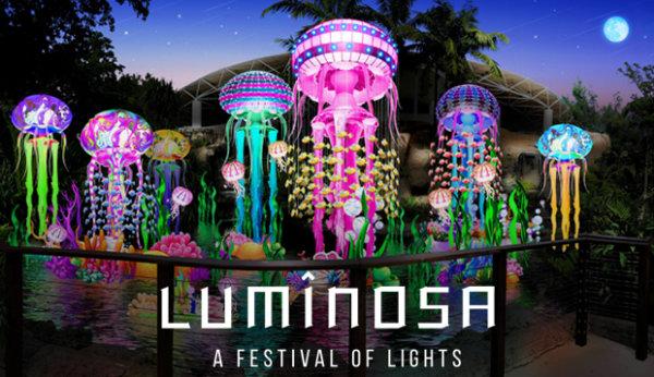 None - Luminosa at Jungle Island!