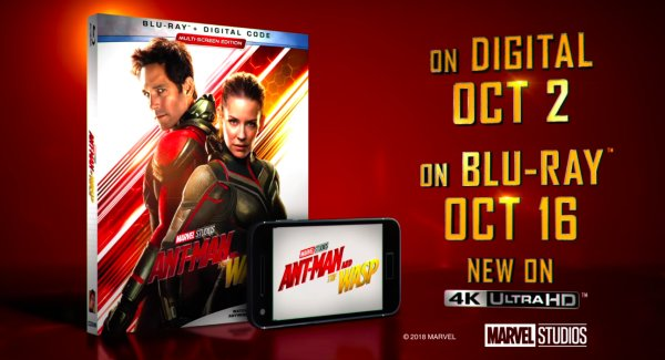 None - ANT-MAN AND THE WASP Digital Movie
