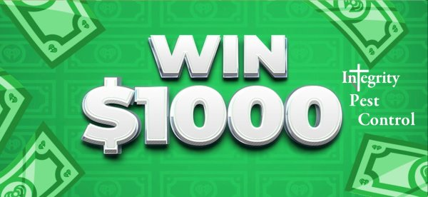 None -  Win $1,000 Cash Weekdays Brought To You By Integrity Pest Control
