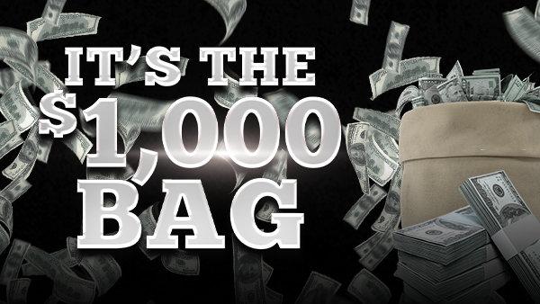 None - It's the $1,000 Bag!