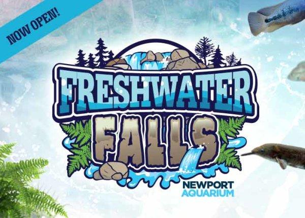 None - Newport Aquarium | Freshwater Falls