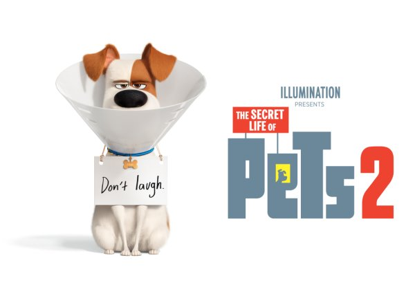 None -  Enter For A Chance To Win Tickets To Secret Life Of Pets 2!