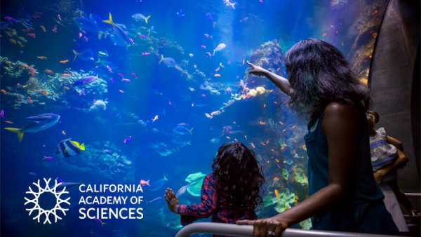 image for Enter For A Chance To Win Tickets To California Academy Of Sciences