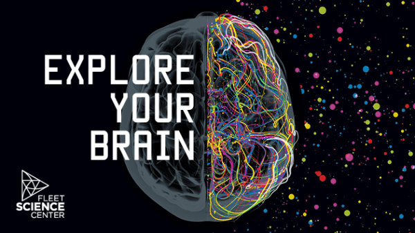 image for Explore Your Brain with STAR 94.1 at Fleet Science Center