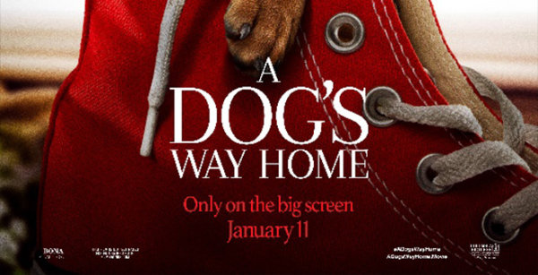 None -  Win Tickets To See A Dog's Way Home!
