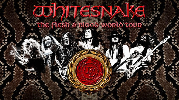 None - Whitesnake