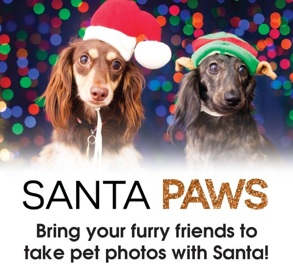 None -  Have your pet's holiday picture taken with Santa at Santa Paws at the Fair Oaks Mall!