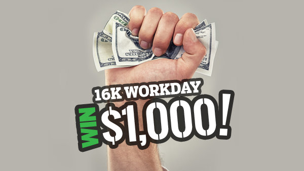 None - 16K Workday