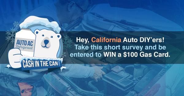 None - Auto DIY'er Survey!