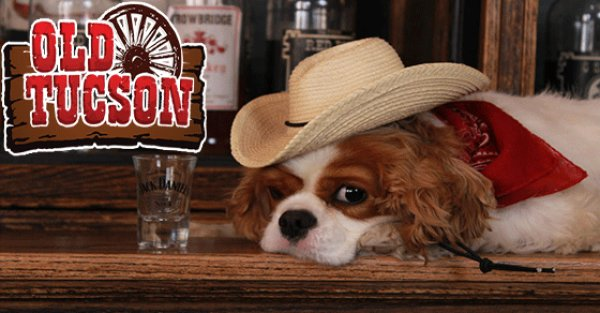 None - Win tickets to Old Tucson Dog Days of Summer!