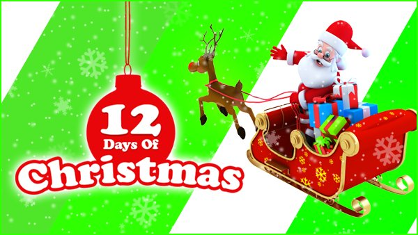 None - 12 Days of Christmas!