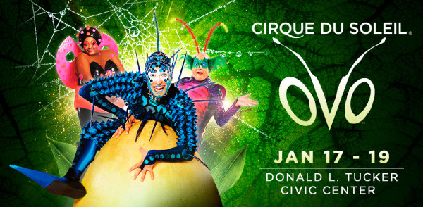 None - See Cirque Du Soleil OVO at the Donald L. Tucker Civic Center!