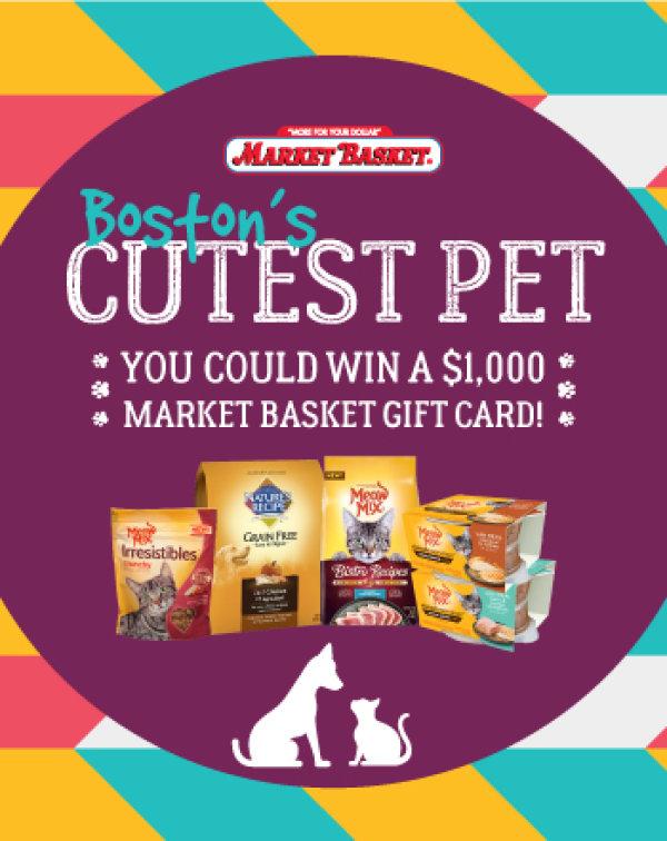 Market Basket Cutest Pet Event | Contest | 101.7 The Bull