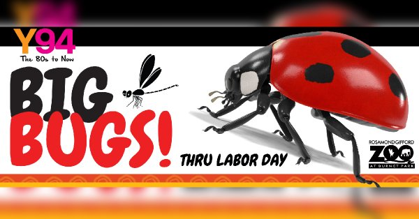 None -  Y94 presents BIG BUGS! at the Rosamond Gifford Zoo! Win Tickets!