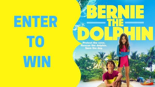 None - Bernie The Dolphin