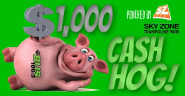 None - $1,000 CASH HOG