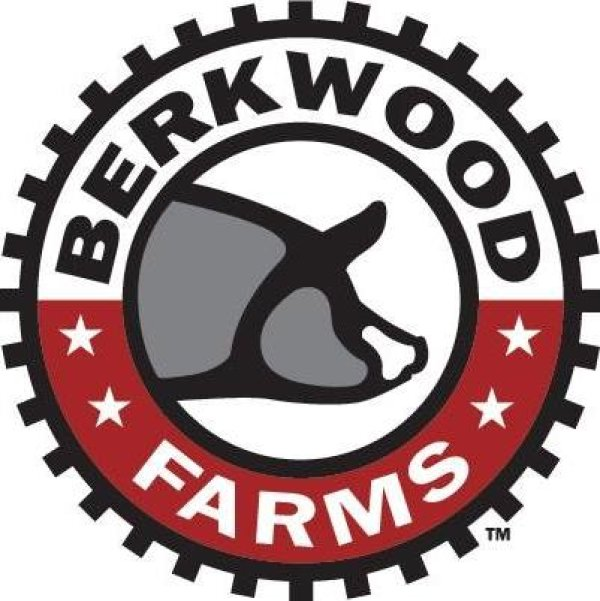 Play Berkwood Bullseye with KXnO!