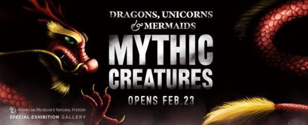None - COSI | Dragons, Unicorns and Mermaids: Mythic Creatures