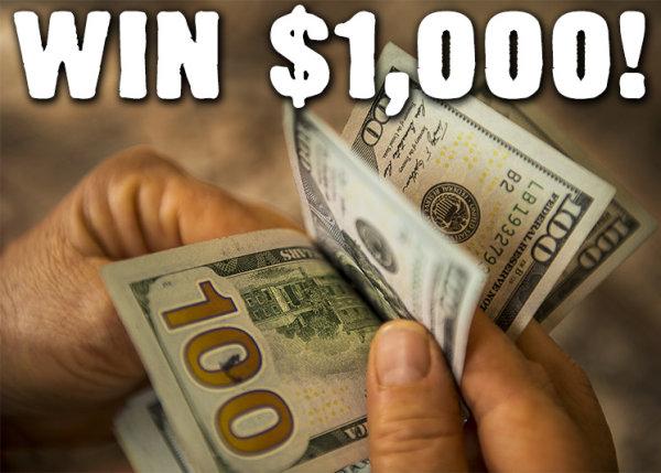 None - ALTernative Income WIN $1,000