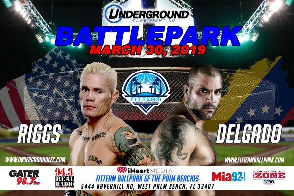 None - Battlepark MMA Fight