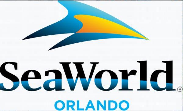 None - Electric Ocean at SeaWorld Orlando!