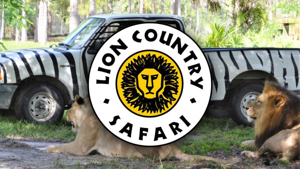 None - Lion Country Safari
