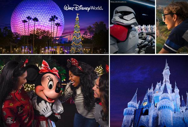 None - Walt Disney World Annual Passes