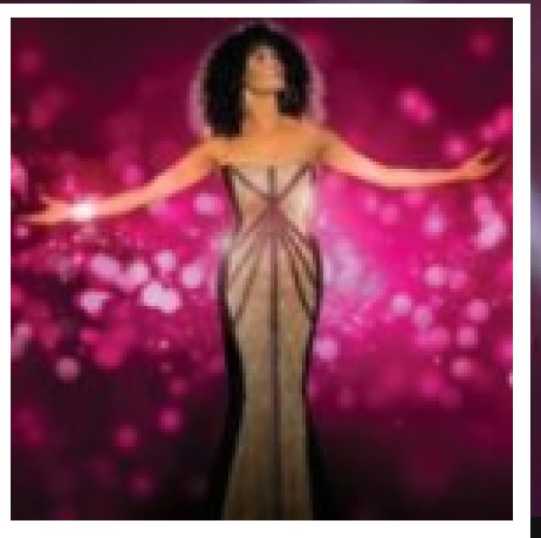 None - The Whitney Houston Show Coming To Sunrise Theater!