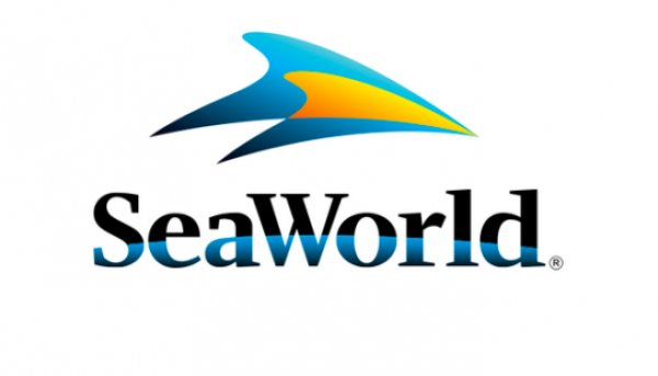 None - SeaWorld Orlando's Electric Ocean