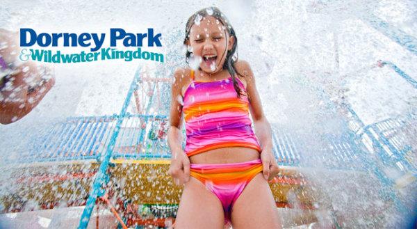 None - AMOE: Wildwater Wednesdays- Win Dorney Park Passes!