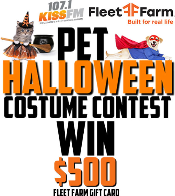 None - KISS FM Pet Halloween Costume Contest