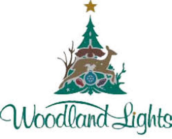 None - Woodland Lights