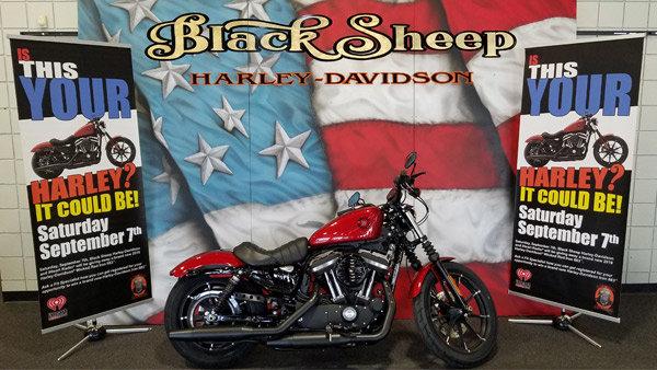 None - That Harley's Mine!