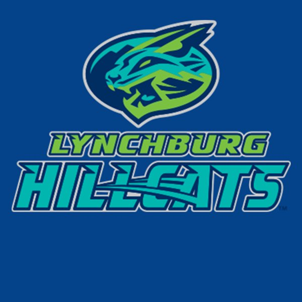 None -  Win a Family 4-Pack of Tickets to the Hillcats July 4th Game!