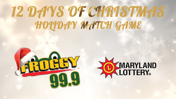 None - 12 Days of Christmas Holiday Match Game