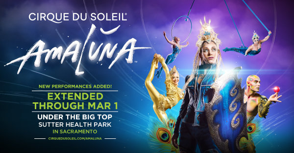 image for Why do you deserve to win a night out at Cirque Du Soleil Amaluna?!