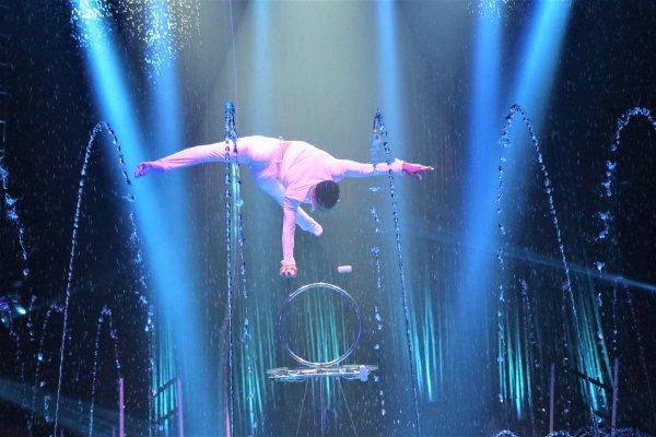None - See Cirque Italia!