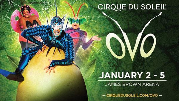 Cirque du Soleil Presents: OVO!