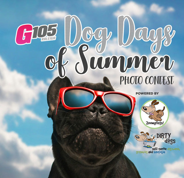 Gallery - Dog Days of Summer Photo Contest